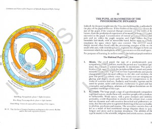iridology text